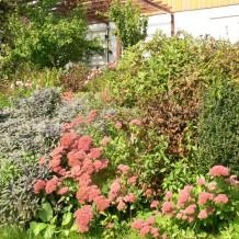 Den Garten für Tiere und Pflanzen im Winter nutzen