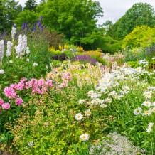 Gartentrends 2016 – Zurück zur Natur